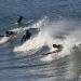 deakin-surfing-web